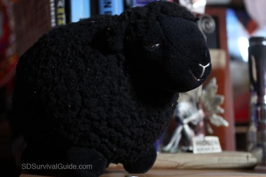 Look at this sheep. It is so smug.