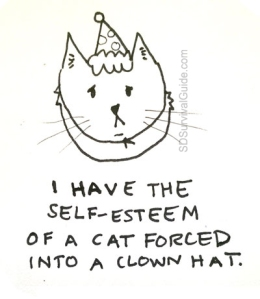 self-esteem-of-a-cat-forced-clown-hat